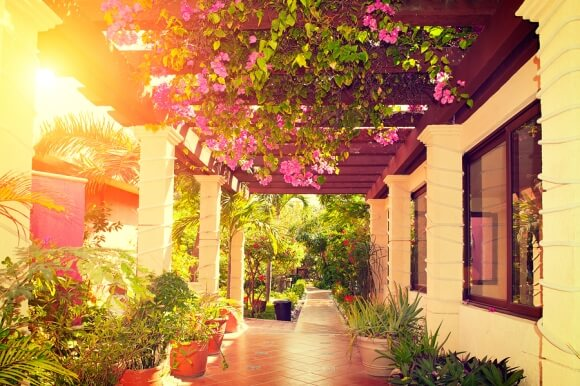 Beautiful & Clean Hotel Outdoor Area